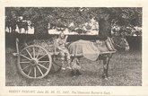 Romsey Pageant: charcoal burner's cart
